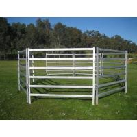 China 40x40 1.8M x 2.1M Heavy Duty Portable Cattle Panels For sale 6 Oval Bars 30*60mm wholesale
