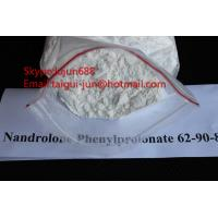 Quality Oral Pharmaceutical Anabolic Steroid Hormones , Raw Nandrolone Phenylpropionate Testosterone Powder 62-90-8 for sale
