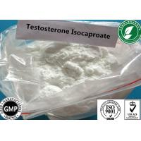 China Raw Steroid Powder Testosterone Isocaproate For Muscle Gain CAS 15262-86-9 wholesale