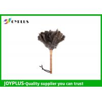 China Professional Home Cleaning Tool Ostrich Feather Duster Bamboo Handle wholesale