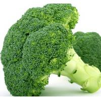 China pure natural Broccoli Powder wholesale