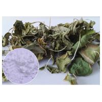 Skin Scars Anti-aging Gotu Kola Leaf, Centella Asiatica Extract for Cosmetic industry