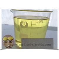 China Cas 5949-44-0 Injectable Anabolic Steroids Testosterone Undecanoate 400mg/Ml wholesale