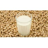 China Non-GMO Soya Beans /Soybean Kernel / Soybean Meal Caken from china wholesale