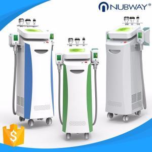 China 2018 best effect fat freeze cryolipolysis slimming machine cryo machine for slimming on sale