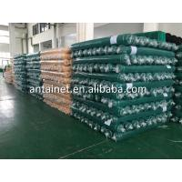 high quality building and gangway green safety net