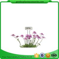 China Blue Ribbon Garden Plant Markers / Metal Plant Markers For Garden Pcs/Bag 4 Packing size 22*22*14  Pcs/CTN 30 wholesale