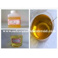 China Muscle Building Injectable Anabolic Steroids Equipoise  Boldenone Undecylenate 300mg/ml wholesale