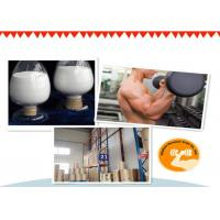 99% Purity Testosterone Isocaproate Test Iso Powder And Oil For Lean Mass Gaining