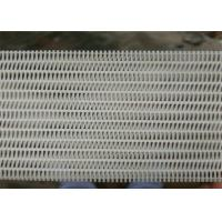 China Medium Loop Polyester Dryer Screen With Long Running Life High Durability wholesale