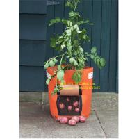 China Pp Fabric Promotion Grow Bag 2-15 Gallon Garden Plant Accessories wholesale