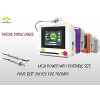China Touch Screen Diode Veterinary Laser Therapy Equipment For Surgical , 810nm / 980nm wholesale
