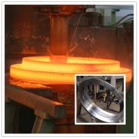 Quality Professional Custom Flange Ring Stainless Steel Forgings Alloy Hastelloy for sale