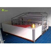 China Automatic Swine Farrowing Crates Stainless Steel Drinker Cast Iron Floor wholesale