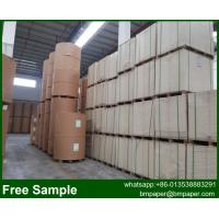 China High Bulk Ivory board Bristol paper for packaging wholesale