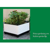 China Plastic Garden Square Planter Boxes , Outdoor White Rectangular Planter Box wholesale