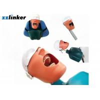 China Dental Simulator Dental Chair Unit Detnal Teaching Model Training Simulator Head with Belt wholesale
