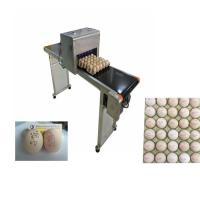 Poultry Agriculture Egg Marking Equipment , Batch Code Printing Machine For Eggs