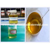 China 99% Purity Injectable Anabolic Steroids Boldenone Undecylenate/EQ For Mass Gain wholesale