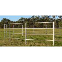 China Round Corral Panels Heavy Duty 6 Oval Rail - Cattle Yards Horse Panels Round wholesale
