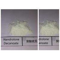 China Injectable Nandrolone Steroid Deca Durabolin Nandrolone Decanoate 360-70-3 wholesale