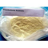 China Bulking Steroid Powder Trenbolone Acetate For Muscle Growth CAS 10161-34-9 wholesale