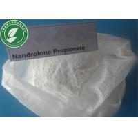 China Pharma Grade Androgenic Steroid Powder Nandrolone Propionate CAS 7207-92-3 wholesale