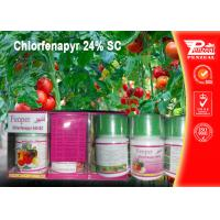 China Chlorfenapyr 24% SC Pest control insecticides 122453-73-0 wholesale