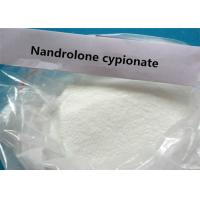 China High Purity Raw Injectable Ananbolic  Nandrolone Cypionate   CAS No. : 601-63-8 wholesale