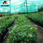 China virgin material green sun shade net from Antai Factory wholesale