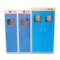 China Cold Rolled Steel Sheet Gas Cylinder Storage Cabinets In Laboratory wholesale