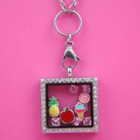 China 2014 High Quality Crystal Stainless Steel Charms Floating Locket wholesale
