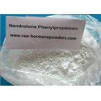China 99.4% Cutting Cycles Steroid /Nandrolone phenylpropionate For Body Builders , White Powder wholesale