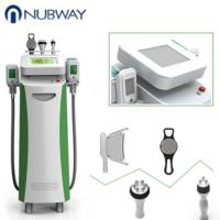 China cryolipolysis weight reduction machines cryolipolysis vacuum cavitation vacuum rf cryolipolysis machine on sale