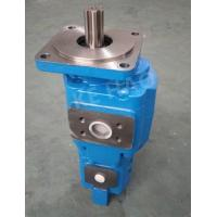 China Durable Commercial Shearing Hydraulic Gear Pump Agricultural Machinery on sale