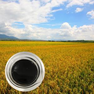 China 30% Liquid Amino Acid Organic Nitrogen Fertilizer With 6.5% Organic Nitrogen wholesale
