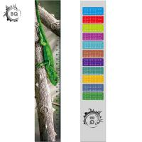 China High Definition Motion 3D Lenticular Ruler Animal Design For Students wholesale