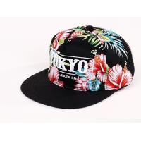China Winter Adjustable Tokoyo Snapback Baseball Caps Customized Embroidered Baseball Hats wholesale