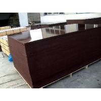 China Brown Film Faced Shutter Plywood (FFP059) on sale