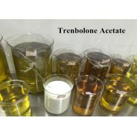 China 99% Trenbolone Steroid Muscle Gain Tren Ace For Injection , CAS 10161-34-9 wholesale