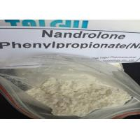 China Oral Nandrolone Phenylpropionate NPP Durabolin Powder CAS 62-90-8 wholesale