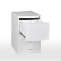 China A4 Folders 0.4mm Plate ISO9001 2 Door File Cabinet on sale