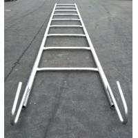 China hot sale hot dipped galvanized steel scaffolding Monkey Ladder used in construction wholesale