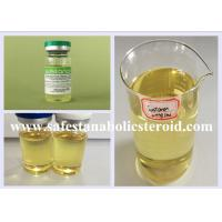 China Bodybuilding Injectable Anabolic Steroids Liquid Testosterone Blend Sustanon 250mg/ml wholesale