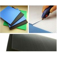 China 4mm 5mm 6mm Twin Wall Polypropylene Sheet For Indoor / Outdoor Display Board wholesale