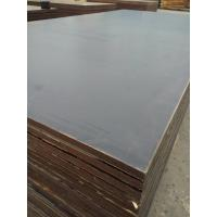 China 4X8/5X10 Combi Mix Core Film Faced Shuttering Plywood wholesale
