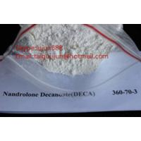 Quality Effective Nandrolone Decanoate Anabolic Steroid Hormones , Deca Durabolin Muscle Building Steroids Powders for sale