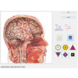 China Digital Health Herald Machine 8D NLS Health Analyzer for Full Body Detection / Repair Treatment wholesale
