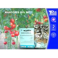 Quality Mancozeb 80% Wp Systemic Fungicides Cas 8018-01-7 Fungicide Products for sale