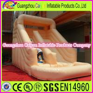 China Mini Inflatable Water Slide Rental wholesale